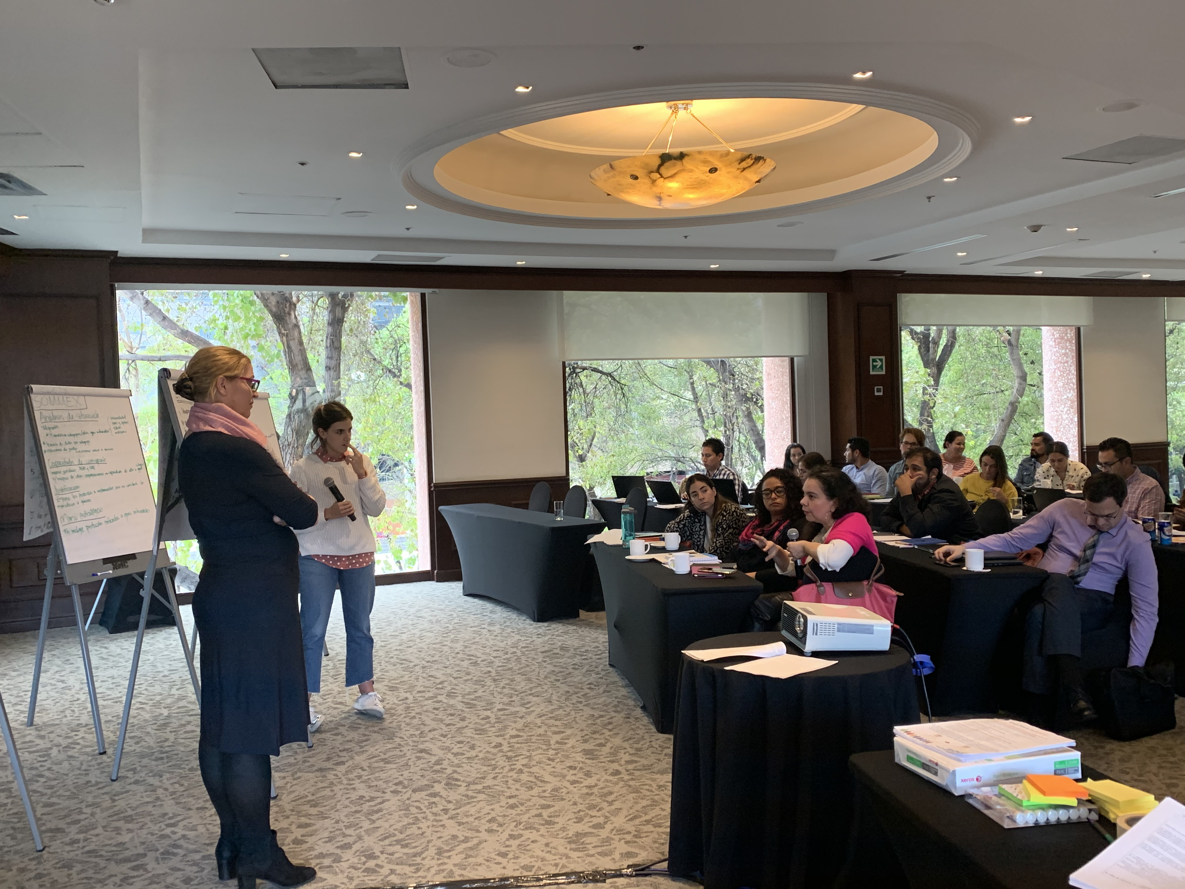 Gender Team doing a workshop in Mexico City, Mexico