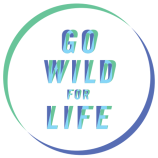 World Environment Day 2016: Let's 'Go Wild For Life""