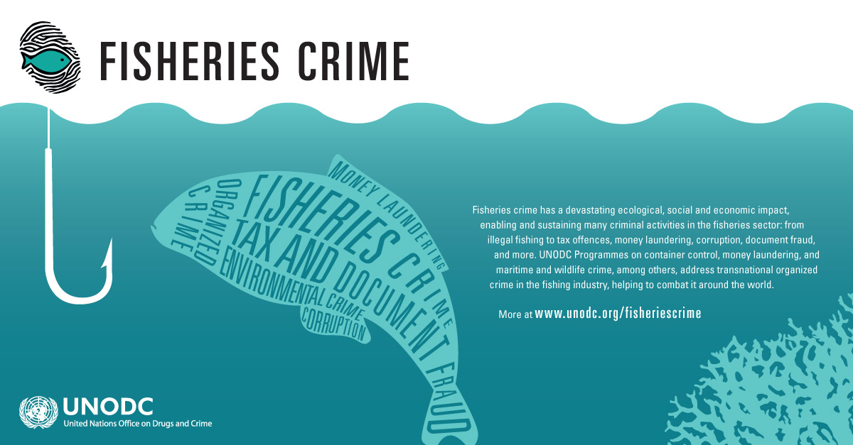 Fisheries crime - Infographic
