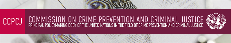 The Commission on Crime Prevention and Criminal Justice