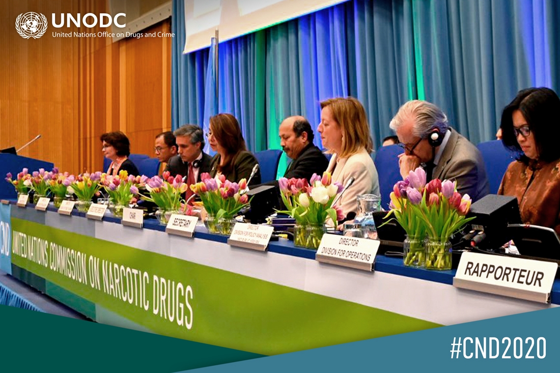 UNODC head calls for elevated support to developing countries on global drug challenges, closing data gaps to leave no one behind © Photo: UNODC