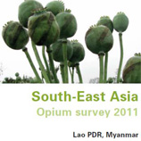 Photo: Opium Survey