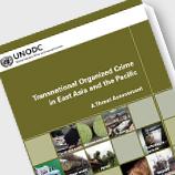 UNODC report cover
