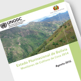Photo: 2014 Bolivia Coca Survey