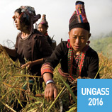 UNGASS 2016: Alternative Development
