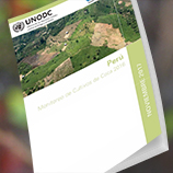 UNODC Survey: Peru coca crop increases but still at lowest rate in the Andean region. Image: UNODC