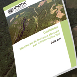New UNODC report: Coca crops in Colombia increase over 50 per cent in one year. Image: UNODC