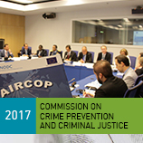 Tackling drug flows, organized crime and terrorism in airports focus of discussions at Crime Commission. Photo: UNODC