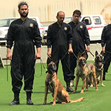 Drug-sniffing dogs from UNODC-supported programme in Iran seize more than 200 kg of heroin