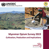 Myanmar opium cultivation drops again as the regional drug economy continues to evolve