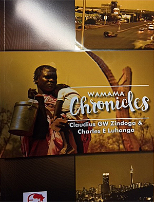 GLO.ACT South Africa Wamama Chronicles