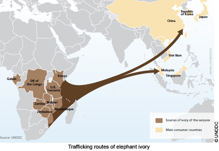 Illegal Exploitation Of Natural Resources In Africa